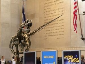 American Museum of Natural History (foto: Odd Busmundrud)