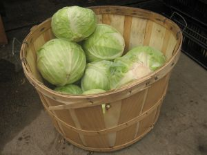 basket_of_cabbages_1