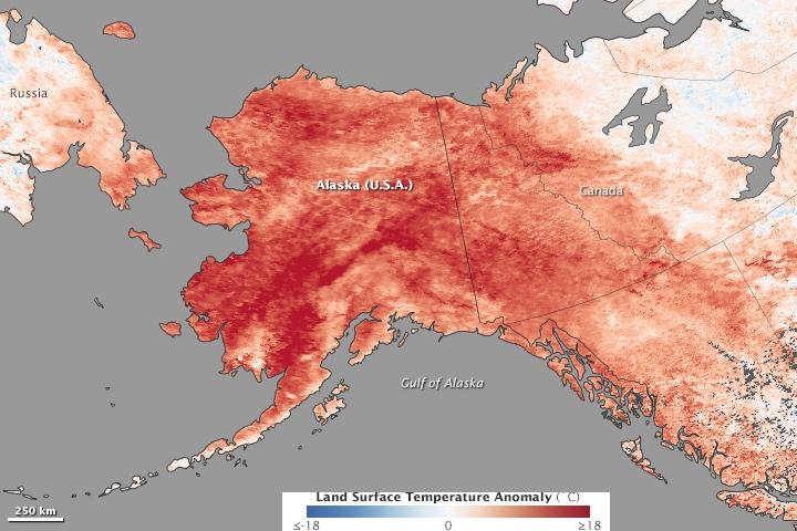 Temperatur sammenlignet med normaltemperaturen for siste uke i januar. (Kilde: NASA)