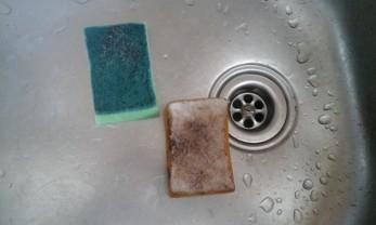 Kjøkkensvamp